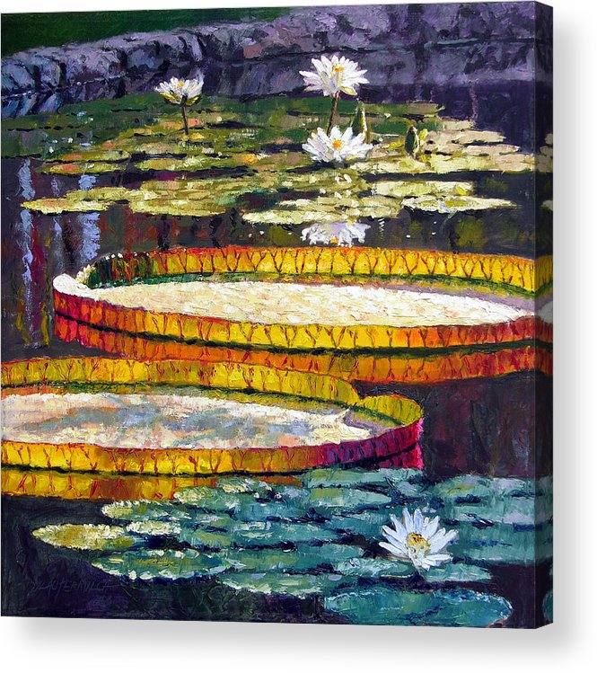 Water Lilies Acrylic Print featuring the painting Morning Glow by John Lautermilch