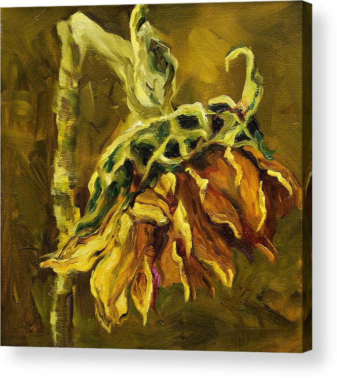Floral Acrylic Print featuring the painting Sunny Sunflower by Diane Whitehead