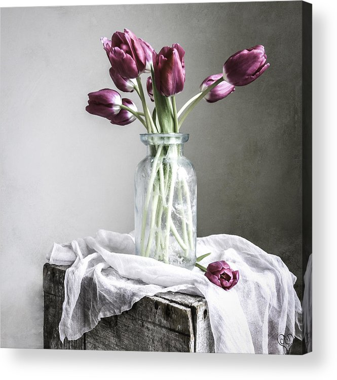 Pink Acrylic Print featuring the photograph Tulips And Light by Jamie Jamison