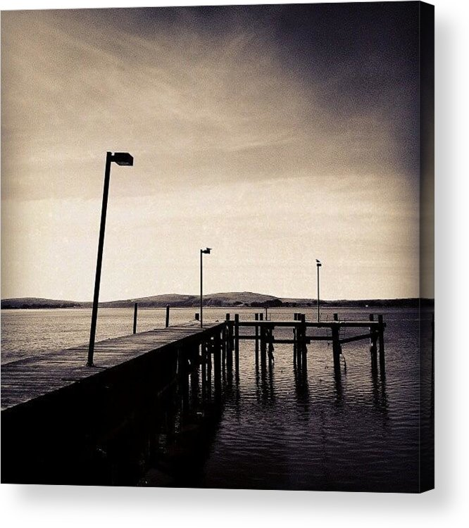 Black And White Acrylic Print featuring the photograph 2 Bird Dock by CML Brown