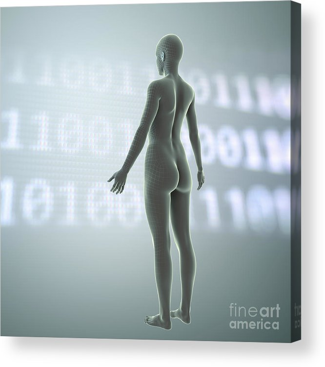 3d Visualisation Acrylic Print featuring the photograph Digital Being by Science Picture Co
