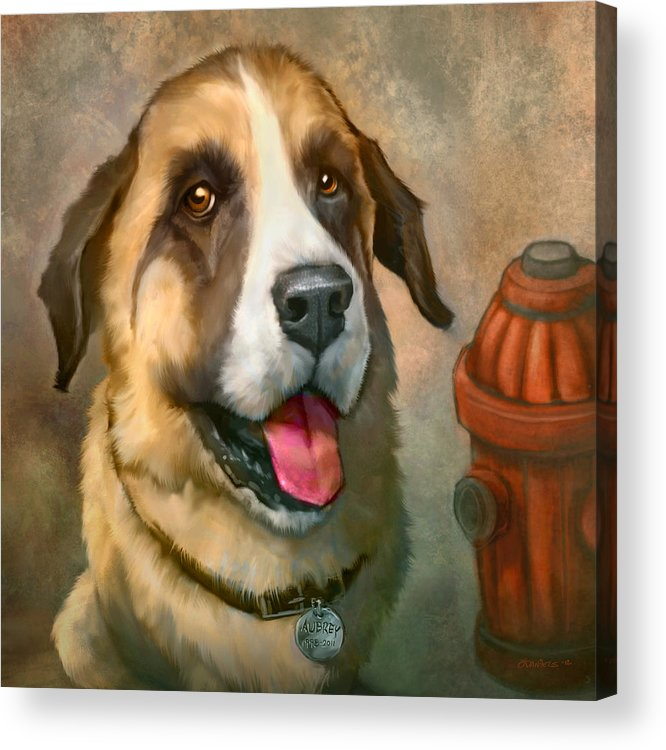 Dog Acrylic Print featuring the painting Aubrey by Sean ODaniels