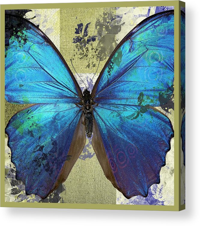 Butterfly Acrylic Print featuring the digital art Butterfly Art - S01bfr02 by Variance Collections