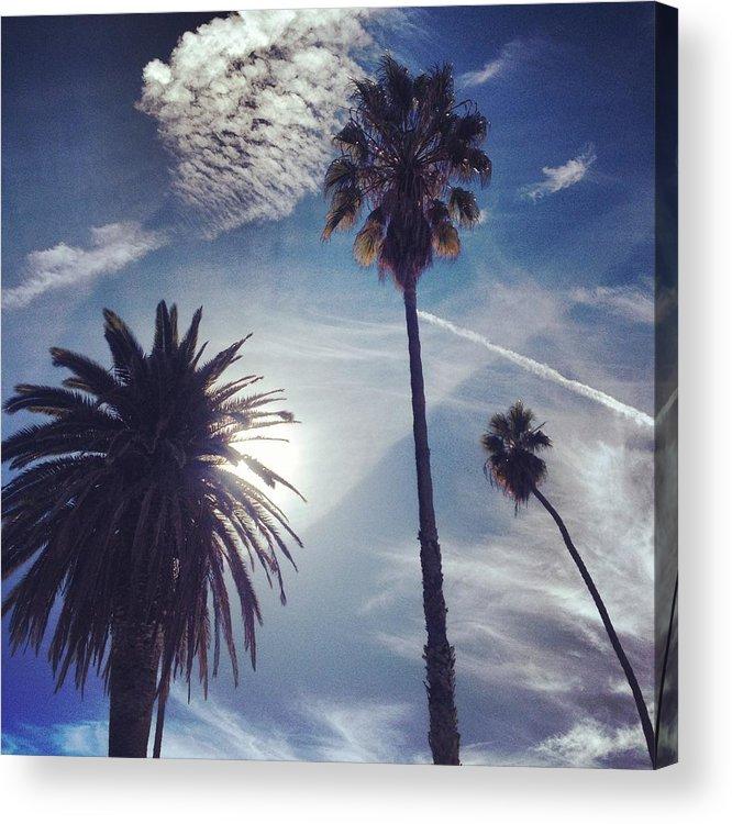 Palm Trees Acrylic Print featuring the photograph California Sky by Skylar Fordahl