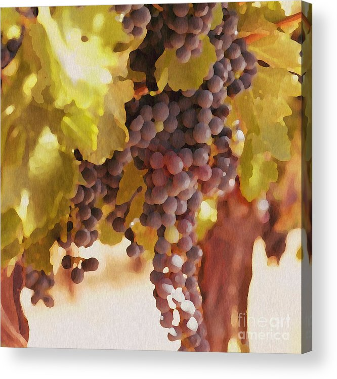 Grapes Acrylic Print featuring the drawing Crush Time by Artist and Photographer Laura Wrede