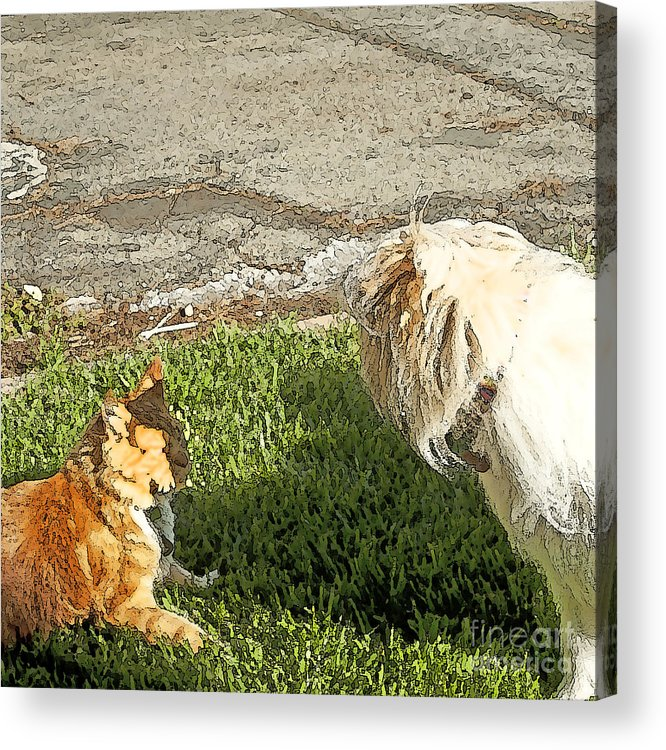 Dog And Cat Fight Acrylic Print featuring the painting Dog And Cat Discuss by Artist and Photographer Laura Wrede