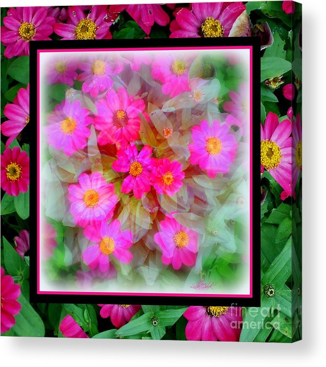 Art Acrylic Print featuring the photograph Floral Framework by Linda Galok