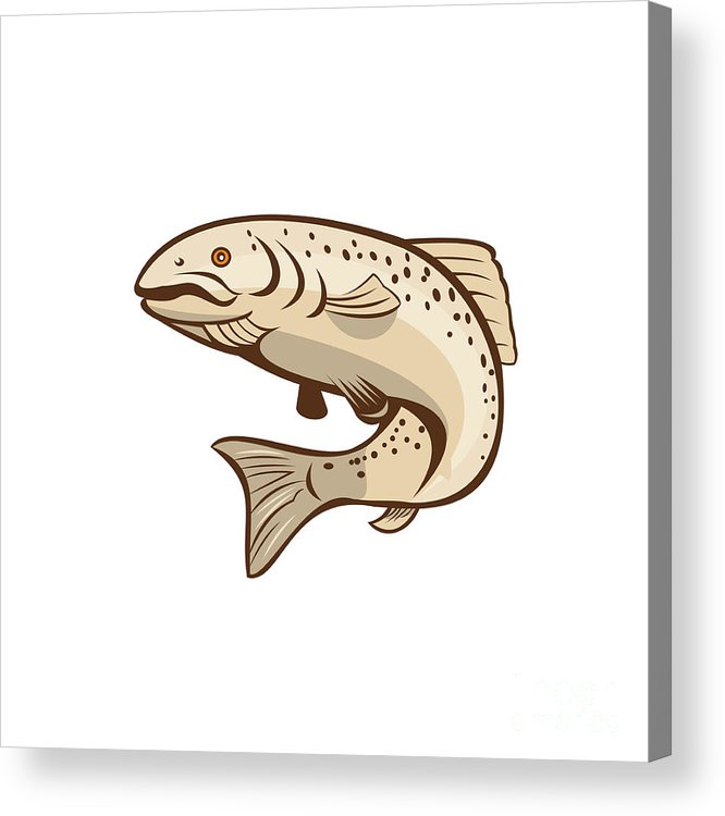 Rainbow Trout Acrylic Print featuring the digital art Rainbow Trout Jumping Cartoon by Aloysius Patrimonio