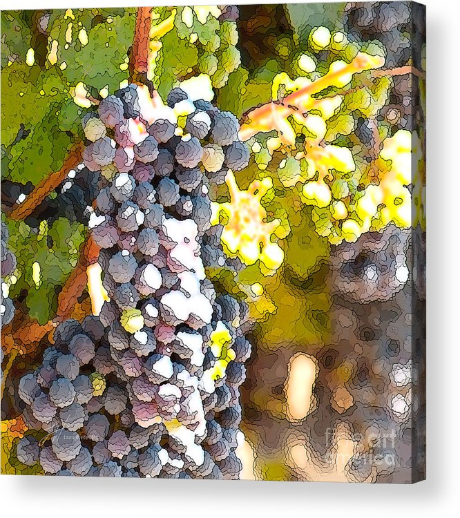Grapes Acrylic Print featuring the painting Ripe Grapes by Artist and Photographer Laura Wrede
