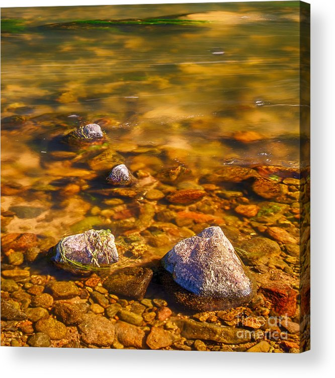 Scottish River Canvas Acrylic Print featuring the photograph River Rocks by Mike Stephen