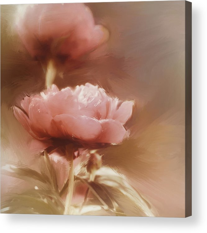 Flower Acrylic Print featuring the digital art Soft Flower Digital Painting by Diane Dugas