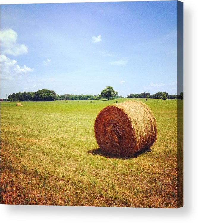 Landscape Acrylic Print featuring the photograph Tennessee Field by Skylar Fordahl