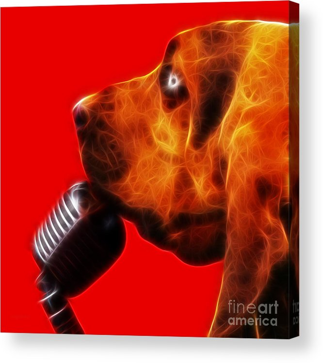 Animal Acrylic Print featuring the photograph You Ain't Nothing But A Hound Dog - Red - Electric by Wingsdomain Art and Photography