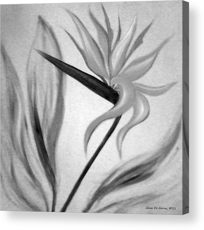 Flowers Acrylic Print featuring the painting Bird Of Paradise by Gina De Gorna
