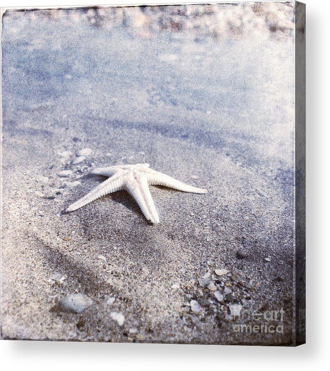 Bright Star Fish Beach Shore Sand Pebble Acrylic Print featuring the photograph Bright Star by Paul Grand