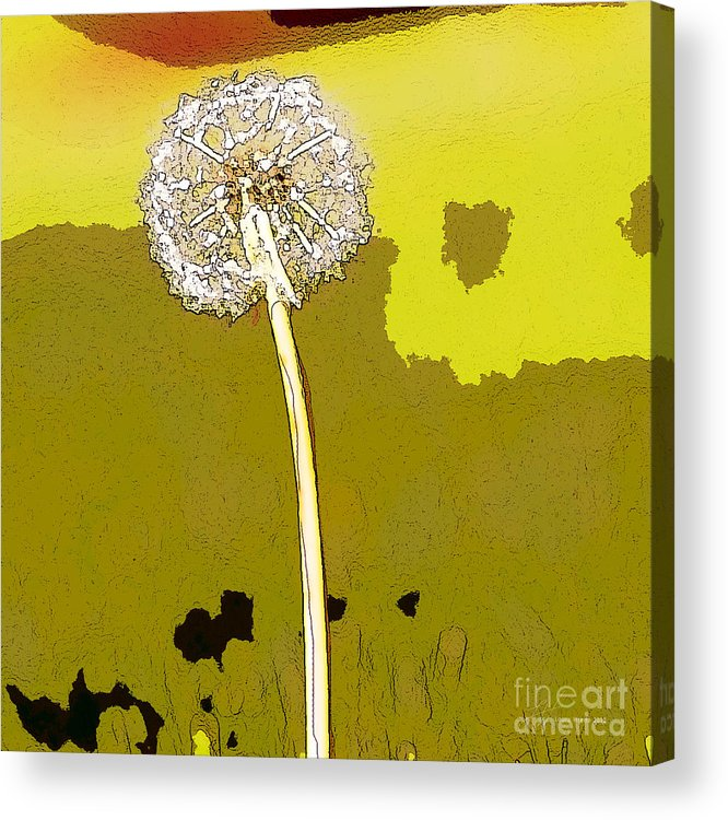 Dandelion Acrylic Print featuring the painting One Day Your Wish Will Come True by Artist and Photographer Laura Wrede