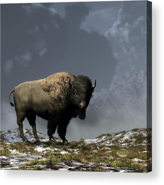 Bison Acrylic Print featuring the digital art Lonely Bison by Daniel Eskridge