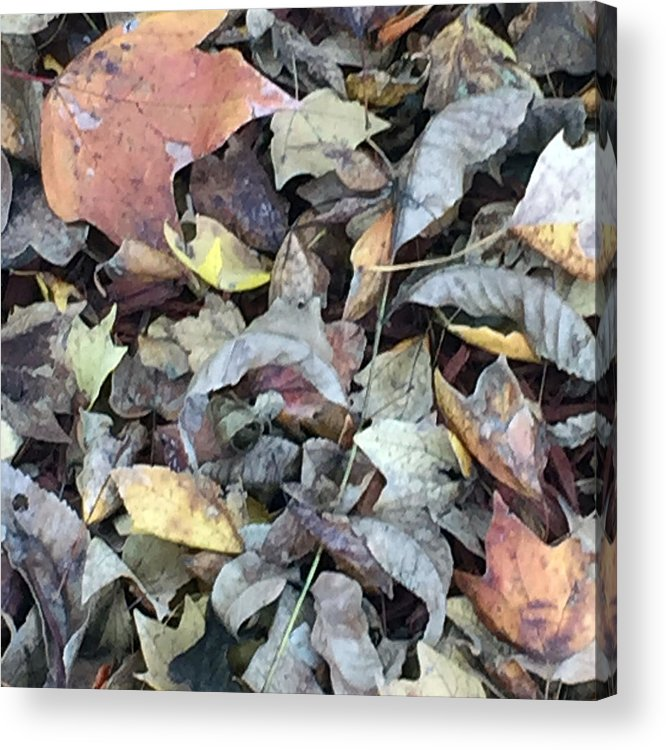 Autumn Carpet Acrylic Print featuring the photograph Autumn Carpet by James Pinkerton