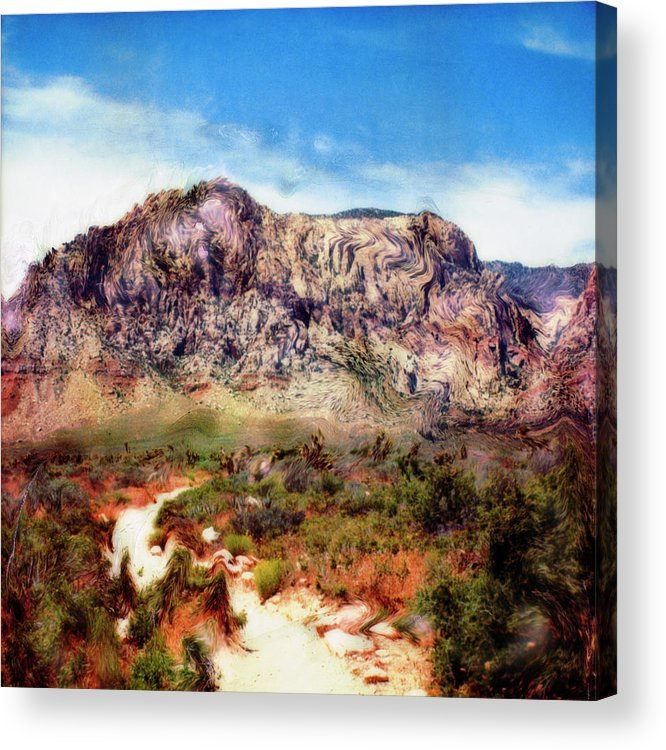Paul Tokarski Acrylic Print featuring the photograph Desert Heat by Paul Tokarski