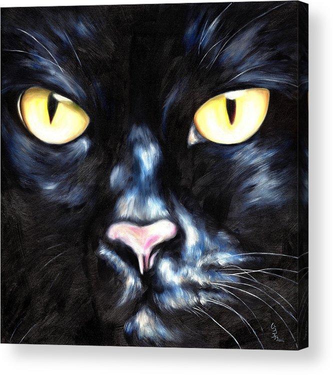 Black Cat Acrylic Print featuring the painting I Am Night by Hiroko Sakai