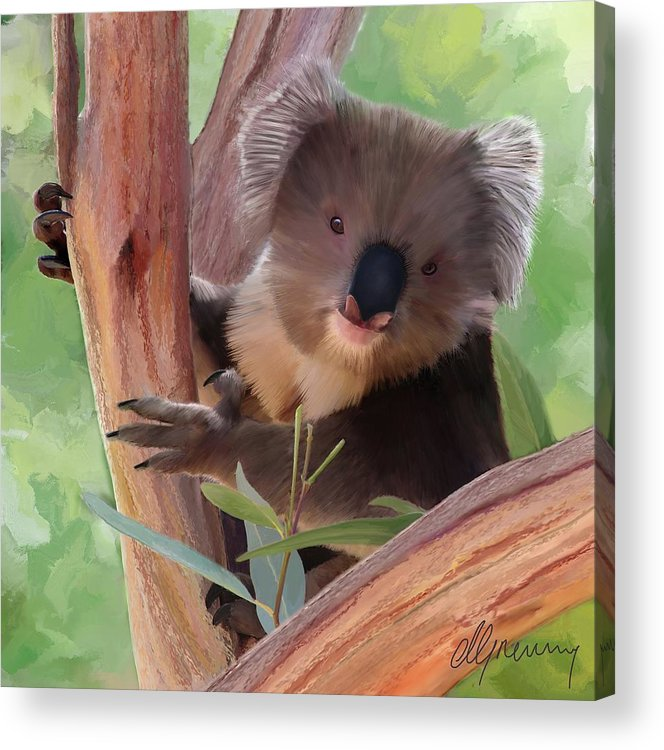 Koala Acrylic Print featuring the painting Koala Painting by Michael Greenaway