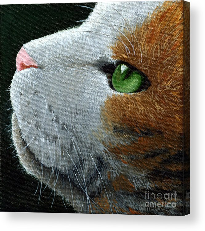 Cat Portrait Acrylic Print featuring the painting Max - Neighbor Cat Painting by Linda Apple