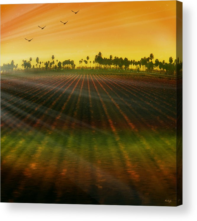 Landscape Acrylic Print featuring the photograph Morning Has Broken by Holly Kempe