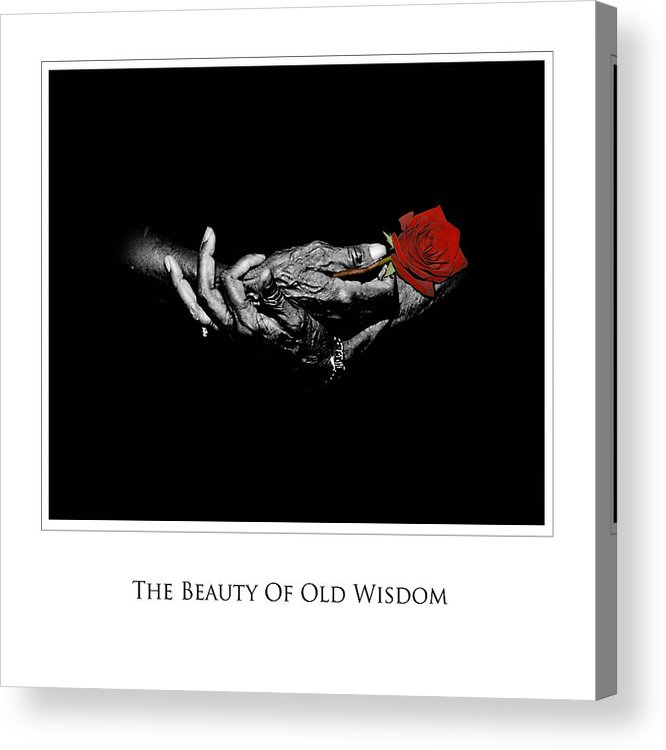 Photography Acrylic Print featuring the photograph Old Wisdom by Richard Gordon