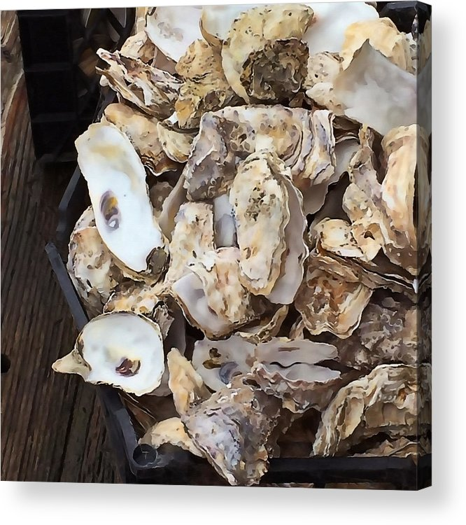 Oysters Acrylic Print featuring the photograph Oyster Shells by Art Block Collections