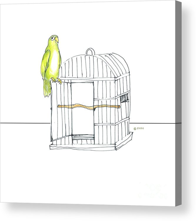 Illustration Acrylic Print featuring the drawing Parrot And Cage by Fran Henig