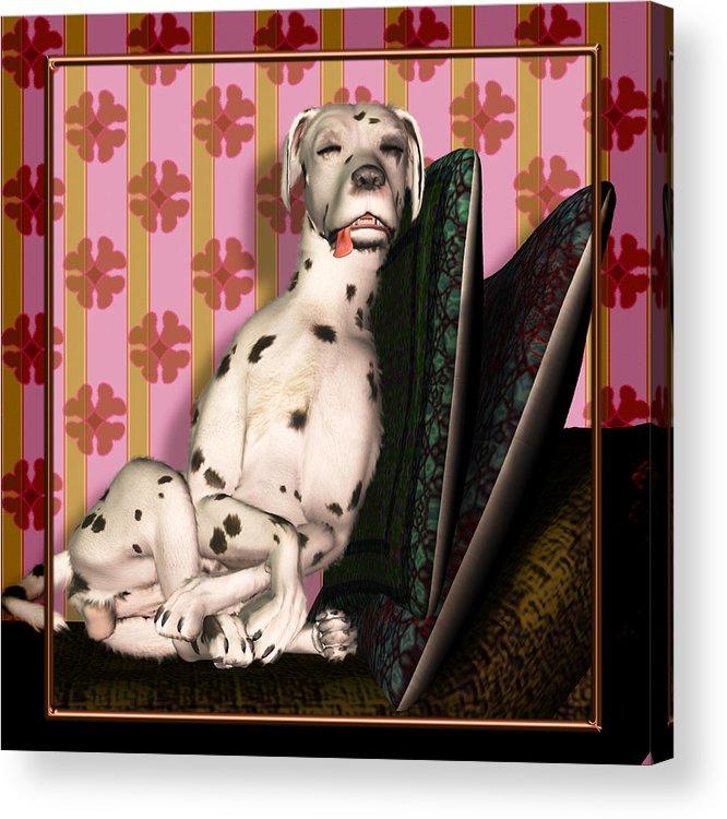 Dalmatian Acrylic Print featuring the digital art Sleeping IIi by Nik Helbig