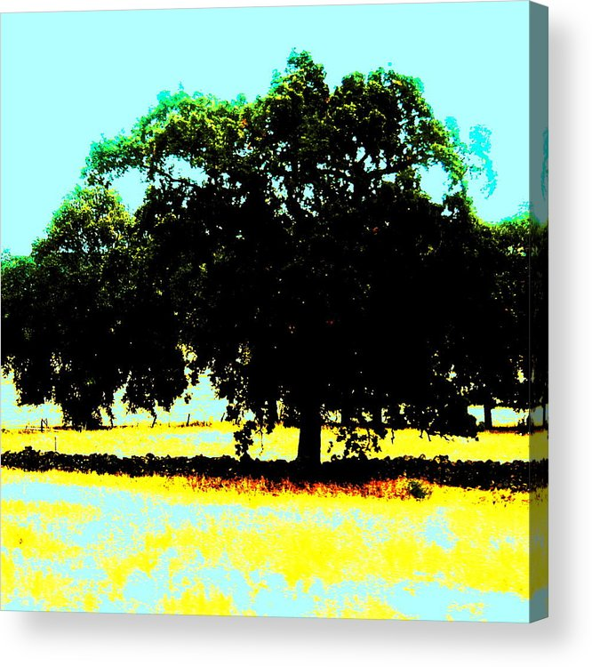 Trees Acrylic Print featuring the painting Solitude by Tim Tanis
