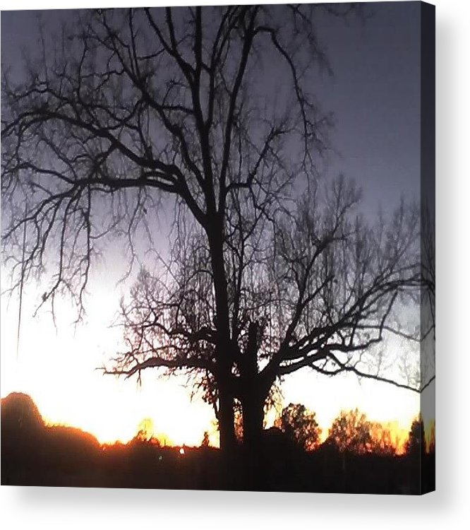 Sunset Acrylic Print featuring the photograph Sunset by Carla Fionnagain