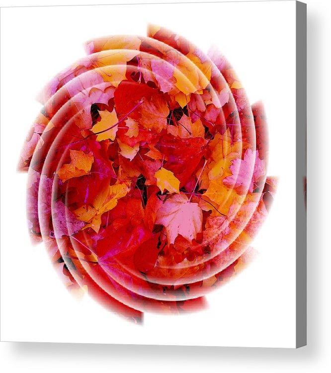 Abstract Acrylic Print featuring the mixed media Swirling Colored Leaves by Mari Biro