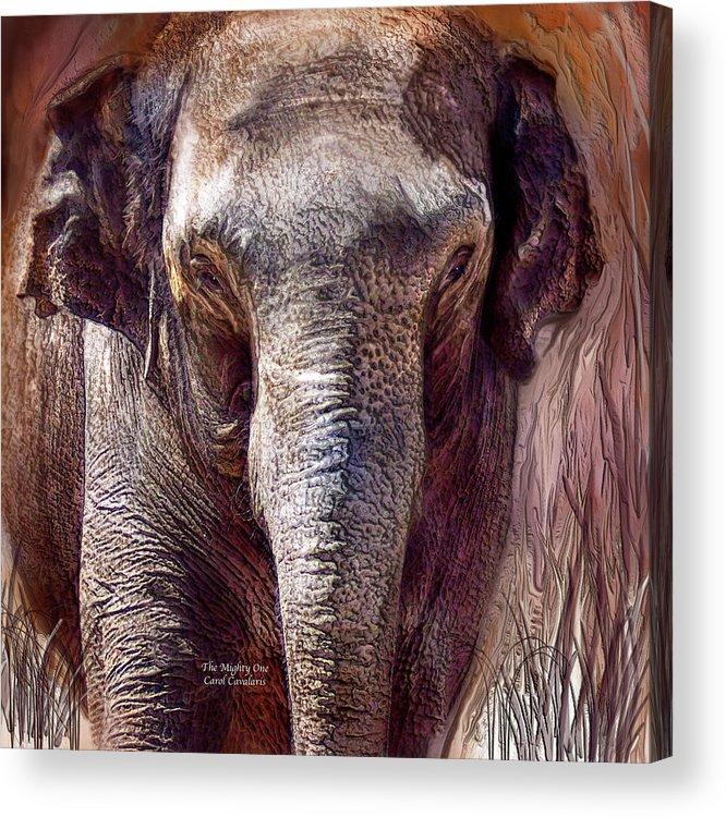Elephant Acrylic Print featuring the mixed media The Mighty One by Carol Cavalaris