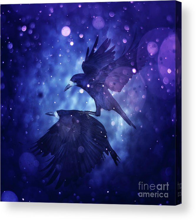 Bird Acrylic Print featuring the digital art Bird Kingdom 3 by Johan Lilja