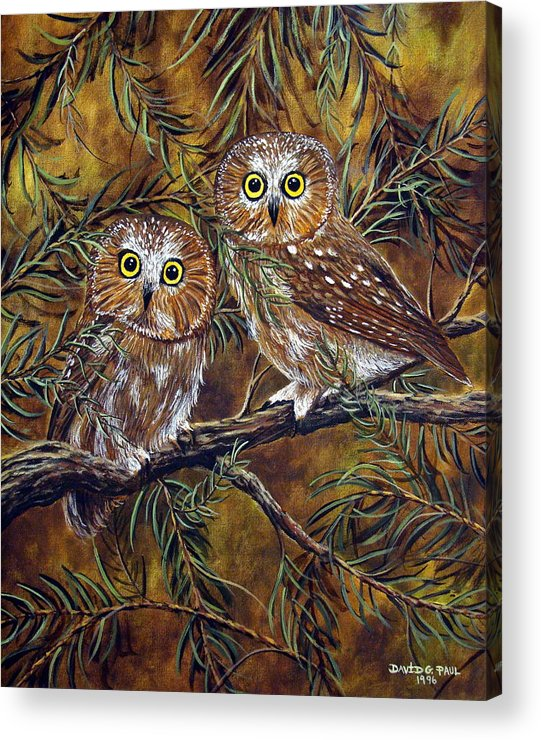 Owls Acrylic Print featuring the painting Branch Buddies by David G Paul