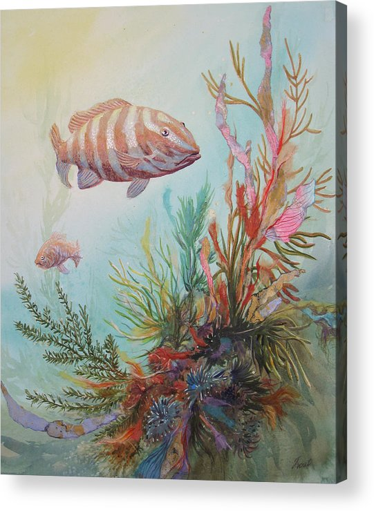 Underwater Acrylic Print featuring the painting Suspended Animation by Don Trout