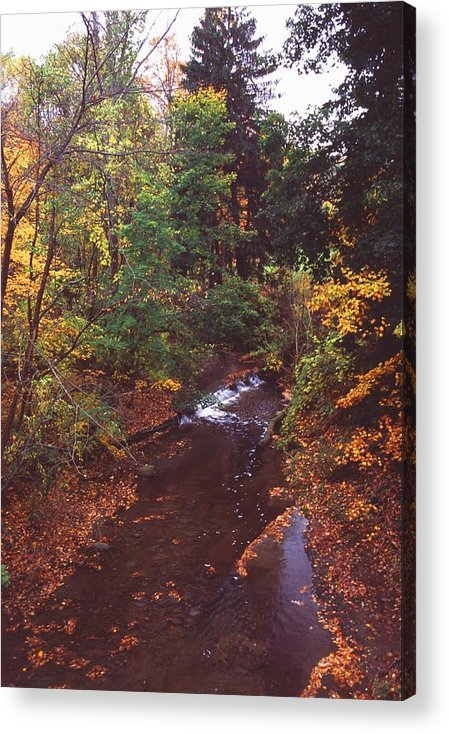 Stream Acrylic Print featuring the photograph 102701-18 by Mike Davis