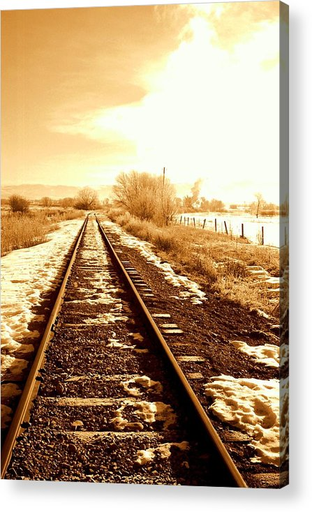 Railroad Acrylic Print featuring the photograph Tracks by Caroline Clark