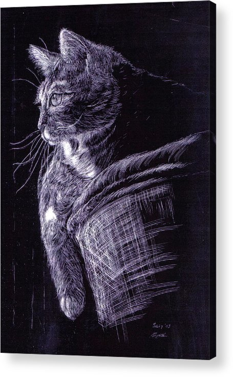 Cat Acrylic Print featuring the painting Cat At The Window by Roger Parnow