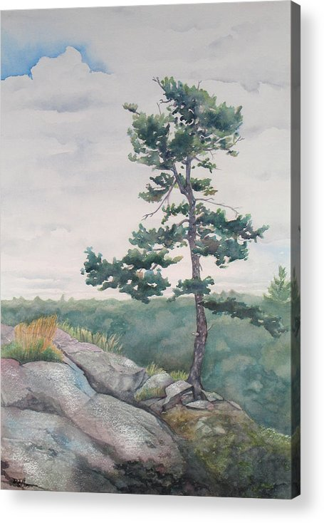 Tree Acrylic Print featuring the painting Over The Shield by Debbie Homewood