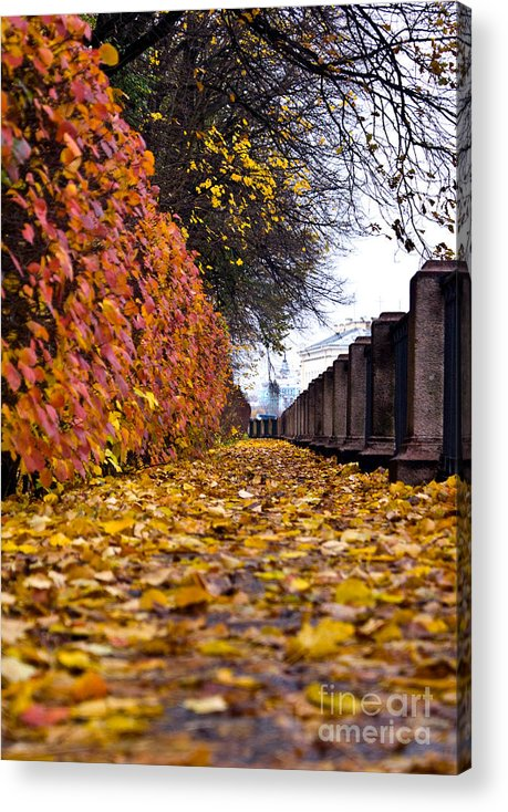 Leaves Acrylic Print featuring the photograph Untitled by Vadim Grabbe