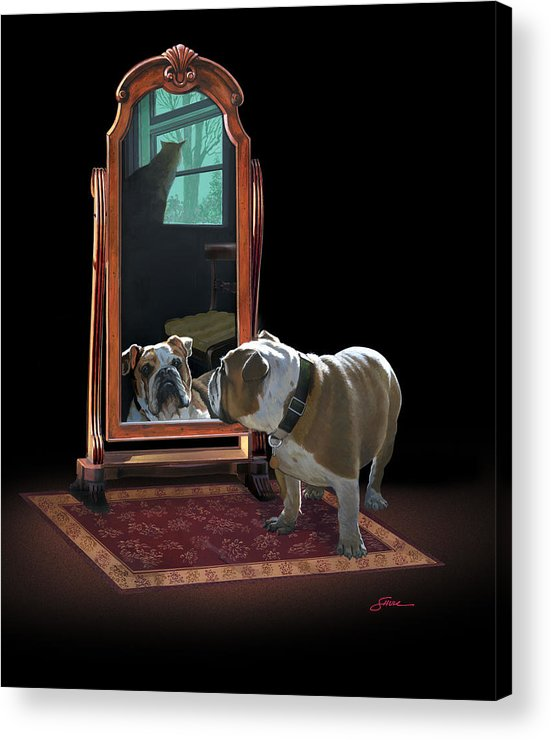 #english Bulldog Acrylic Print featuring the painting Double Trouble by Harold Shull
