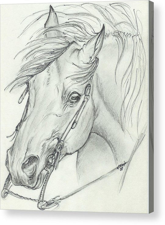 Pencil Acrylic Print featuring the drawing I am ready by Lilly King