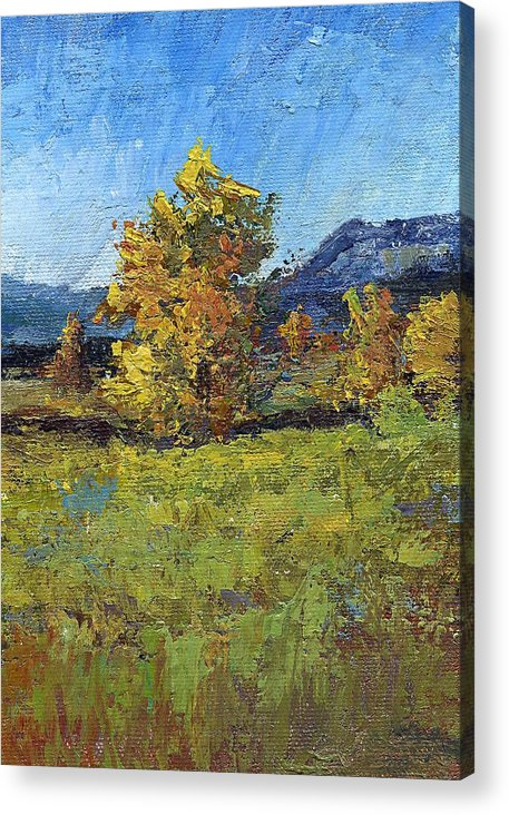 Landscape Acrylic Print featuring the painting Cottonwoods by Jimmie Trotter