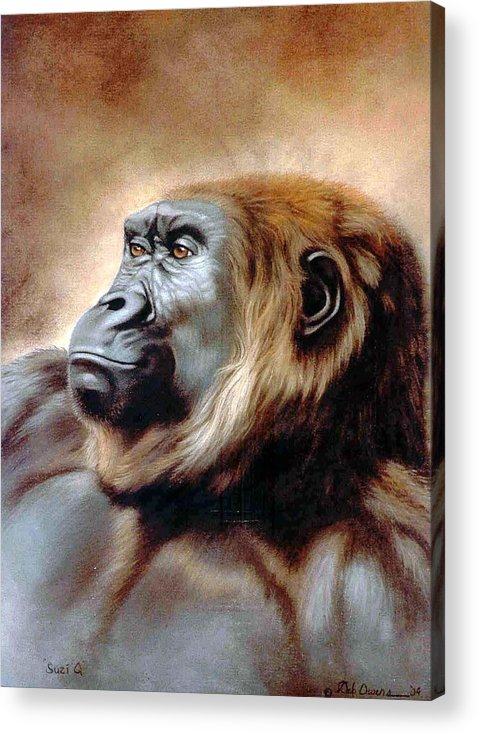 Gorilla Acrylic Print featuring the painting Suzie Q by Deb Owens-Lowe
