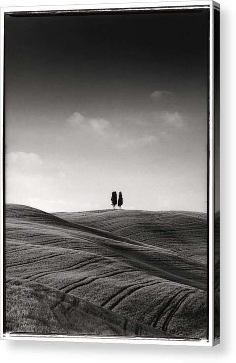 Tuscany Acrylic Print featuring the photograph Tuscany Twin Cypresses by Michael Hudson