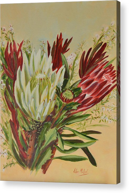 Floral Art Acrylic Print featuring the painting Protea Bunch by Aileen McLeod