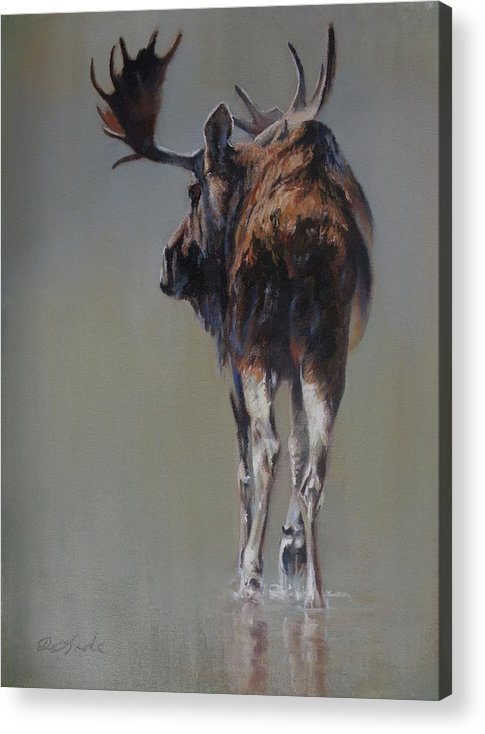 Moose Acrylic Print featuring the painting The Bachelor by Mia DeLode
